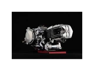 Daytona ANIMA DT190FE motor